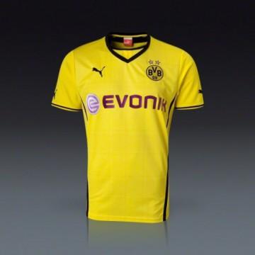 Borussia Dortmund 2013/14 Hazai mez