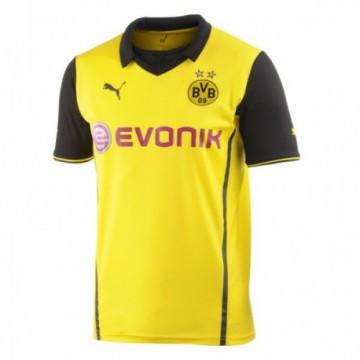 Borussia Dortmund 2013/14 Bl mez