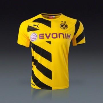 Borussia Dortmund 2014/15 Hazai mez