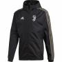 Juventus Kabát 2018/19 (átmeneti)